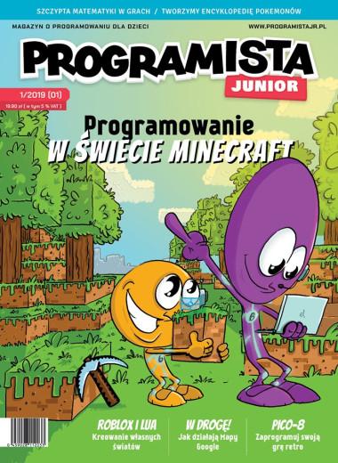 Programista Junior 01/2019 aktualny wrzesień-październik 2019