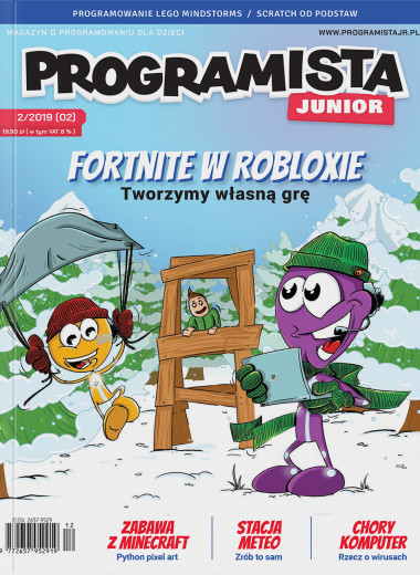 Programista Junior 02/2019 (02)